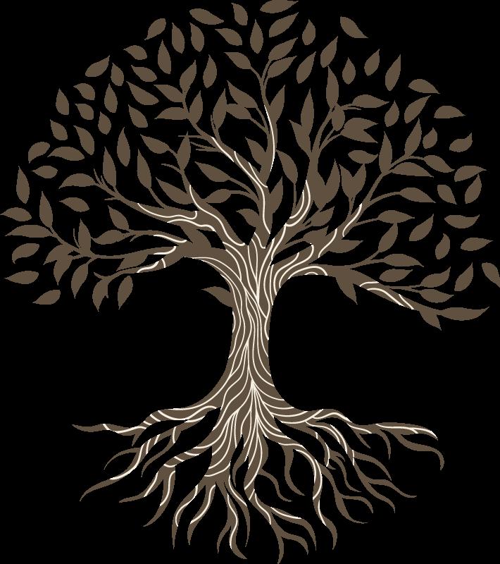 Racine Croisée | Organisme de Bienfaisance